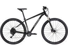 Cannondale Trail 5 - 29 graphite 2021