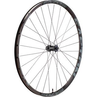 Easton EA70 AX Disc Wheel - 700C / QR/12x100 mm brushed black anodize/vinyl decals