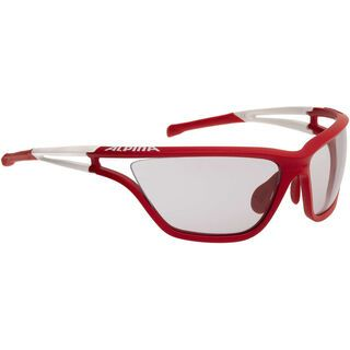 Alpina Alpina Eye-5 VL+, green-l'green/Varioflex black - Sportbrille