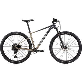 Cannondale Trail SL 1 meteor gray 2021