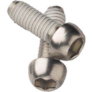 Avid Schrauben für Disc Adapter, rostfreier Stahl, 2 Stück