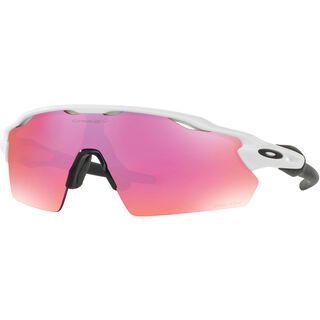 Oakley Radar EV Path Prizm Trail, polished white - Sportbrille