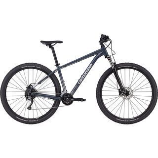 Cannondale Trail 6 - 29 slate gray 2021