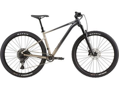 Cannondale Trail SE 1 meteor gray 2021