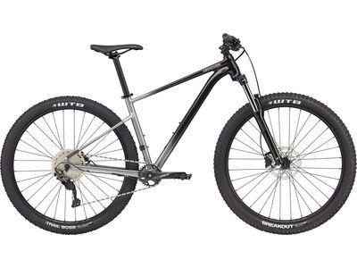 Cannondale Trail SE 4 grey 2021