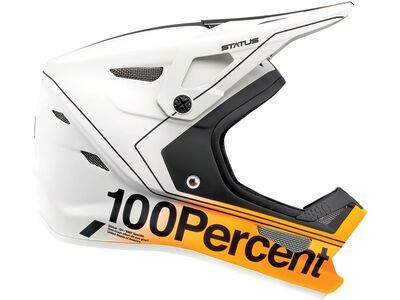 100% Status DH/BMX Youth carby silver